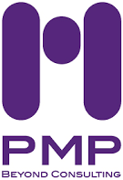 pmp beyond consulting