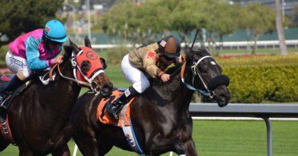 horseracing-culturemath